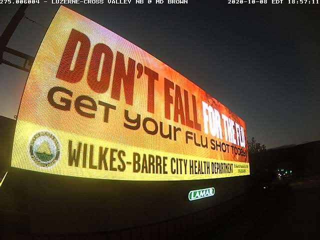 Dont Fall for the Flu Billboard