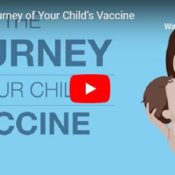 Click here for: The Journey of Your Child's Vaccine